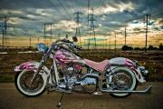 Custom Harley Davidson in pink