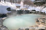 Hot Springs, Fukushima City