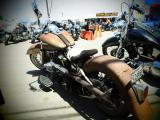 Harley Panhead from California